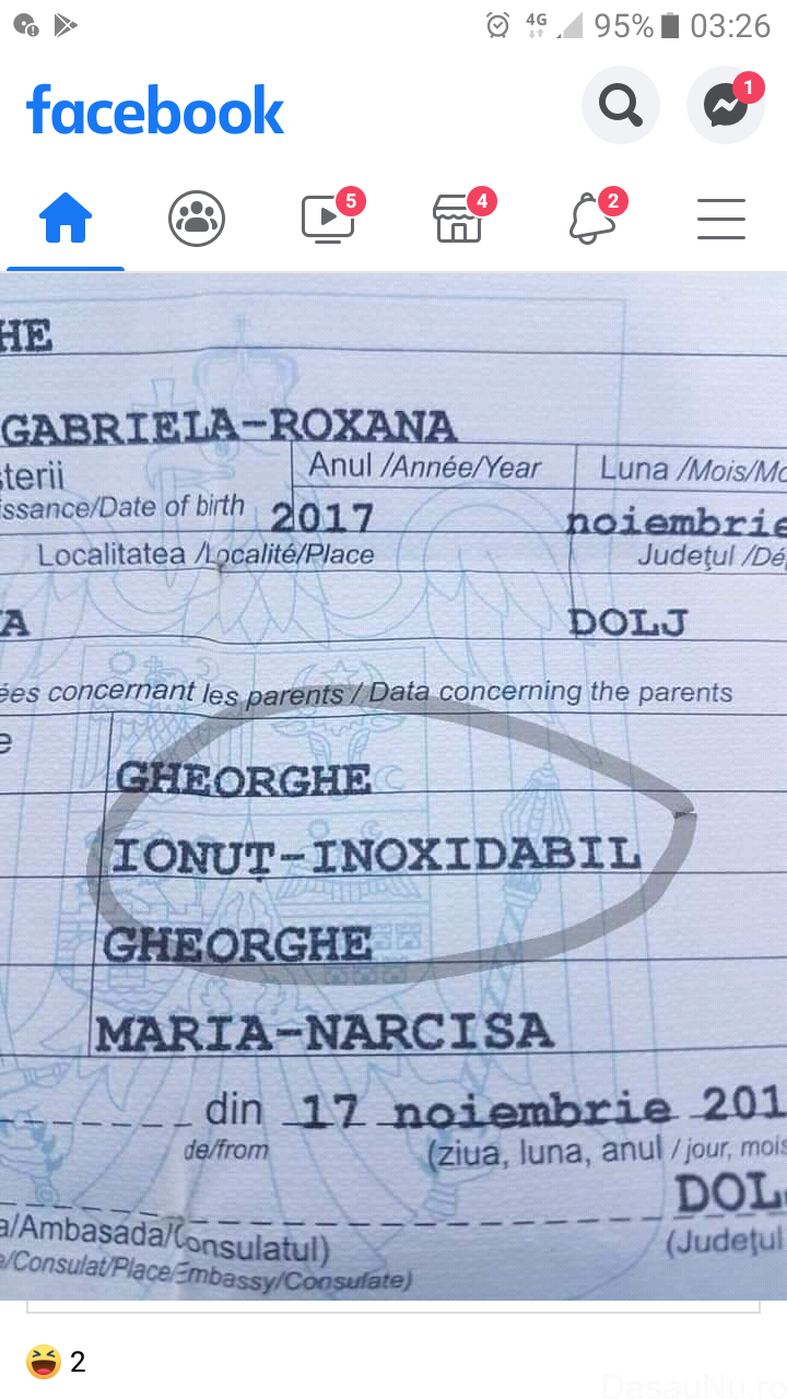 GHEORGHE IONUŢ-INOXIDABI